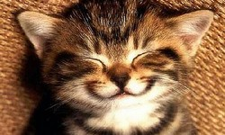 usmiech2