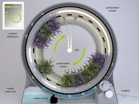 uprawa-greenwheel1