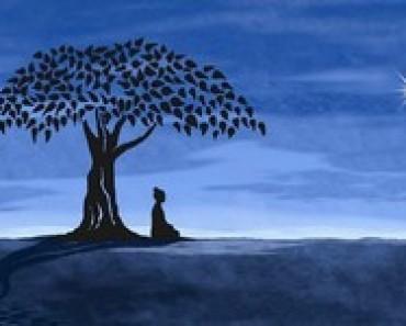 medytacja-z-drzewem