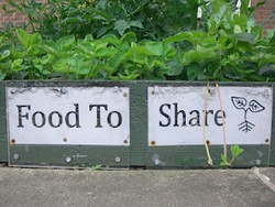 farmy-miejskie-Todmorden