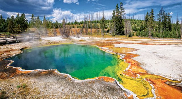 Yellowstone-news