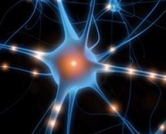 Psychotronika - Internet a Psychocybernetyka
