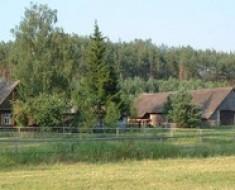 zielona-farma