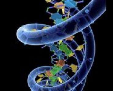 DrugiJezykProgramowaniaOdkrytywDNA